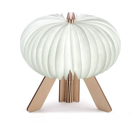 The R Space Lamp