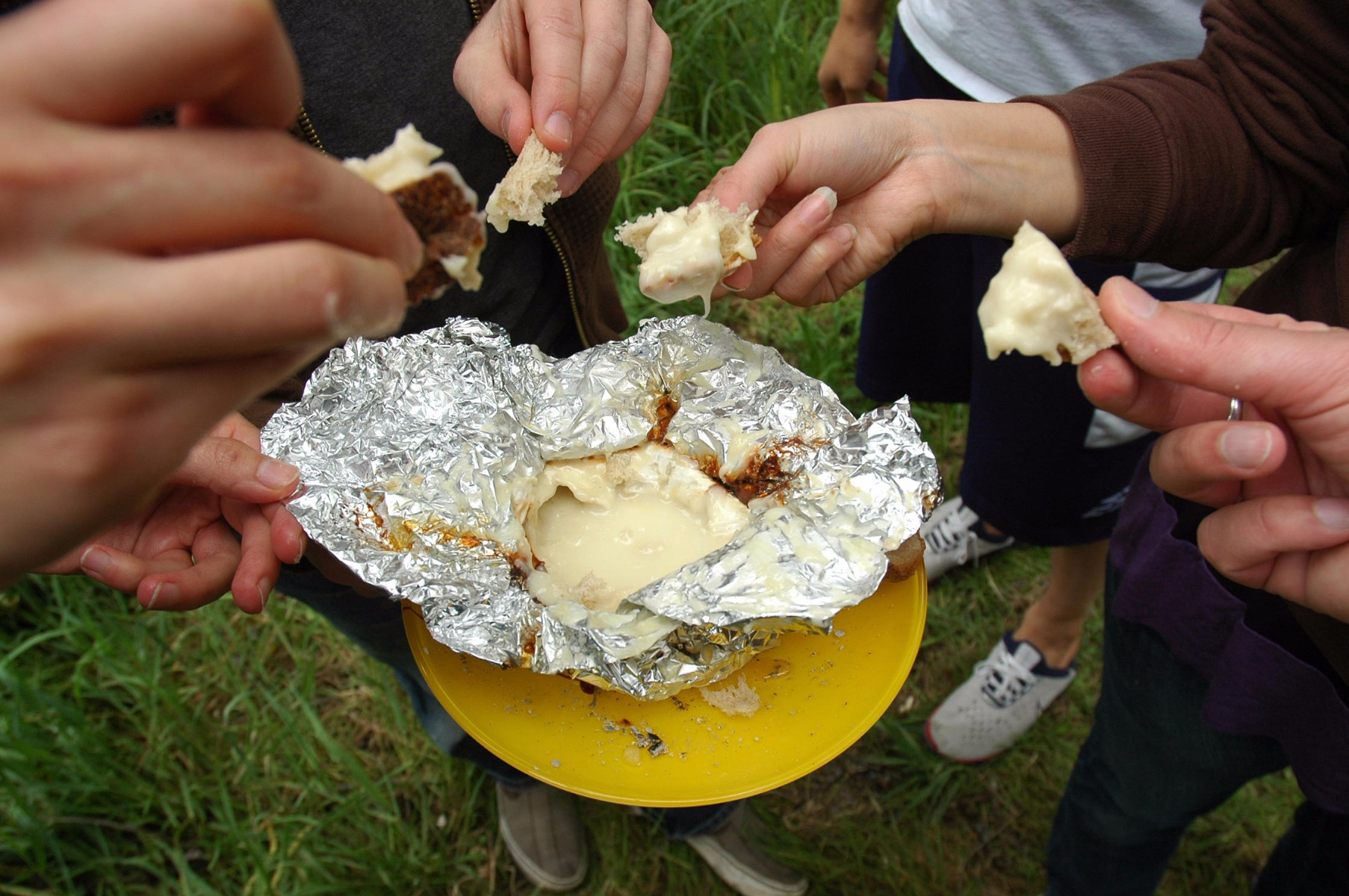 Campfire Cheese